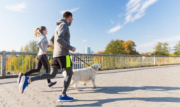 vitalis bienestar consejos para practicar running con mascota perro