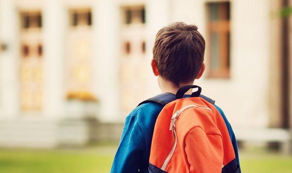 vitalis bienestar preparación vuelta rutina hijos
