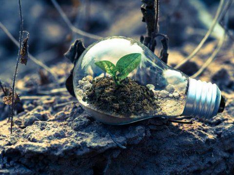 CRM Synergies calidad y el medioambiente